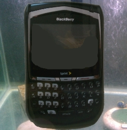 Tanking BlackBerry